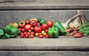 Farm Garden Summer Produce Vegetables