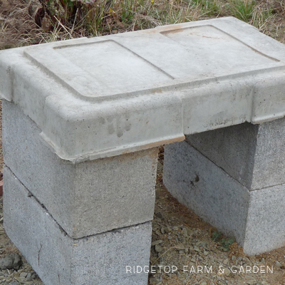 DIY Cement Bench