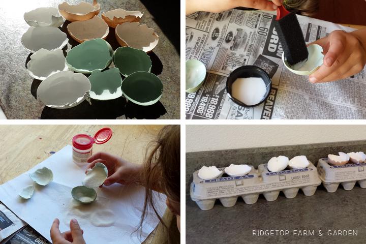 Egg Geodes Setup