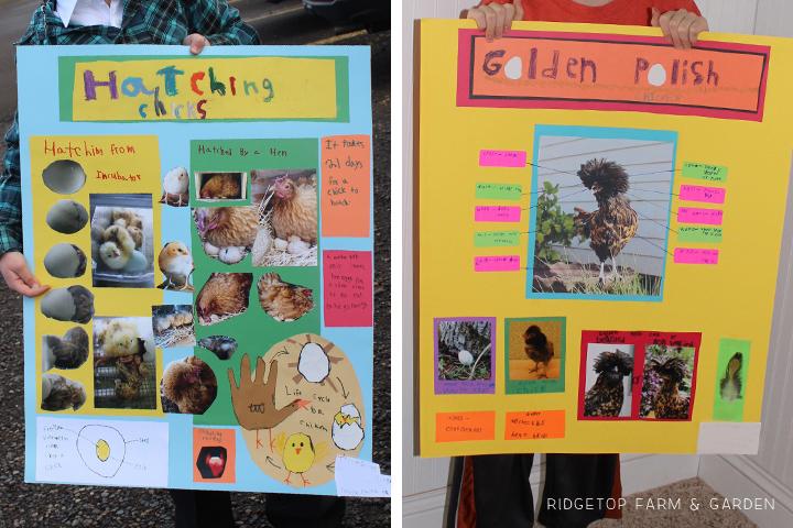 PNPA Spring 2013 posters