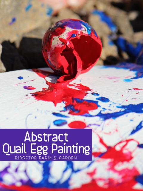 Quail Eggs Title