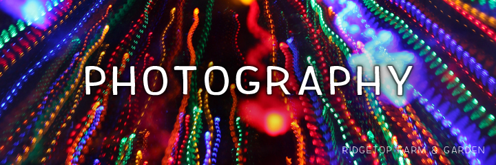 photography title