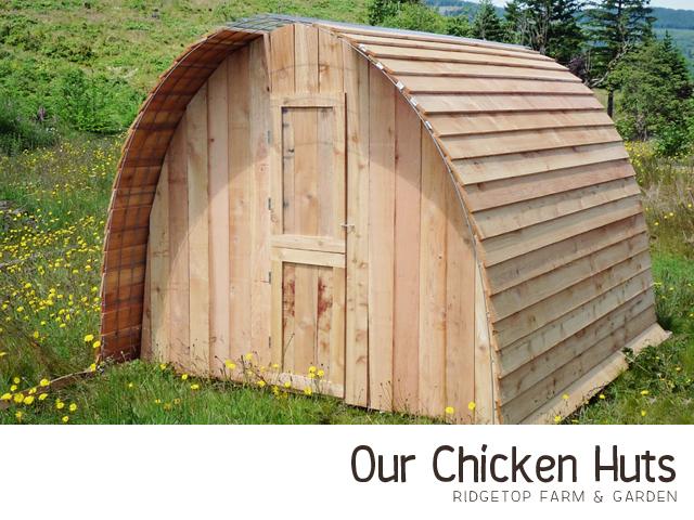 Chicken Hut title