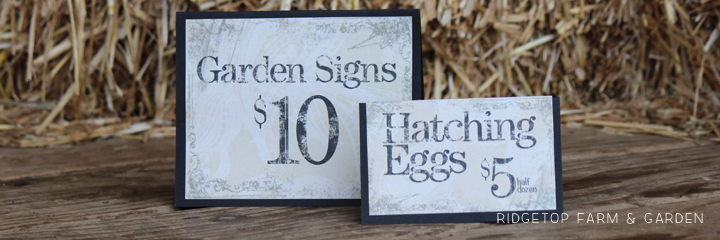 Price Signs 4