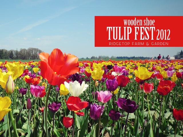 Ridgetop Farm and Garden | Wooden Shoe Tulip Fest 2012