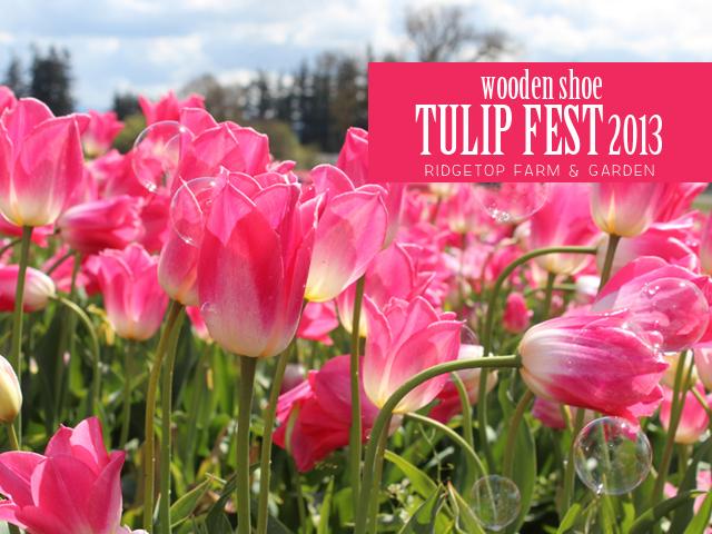 Ridgetop Farm and Garden | Wooden Shoe Tulip Fest 2013