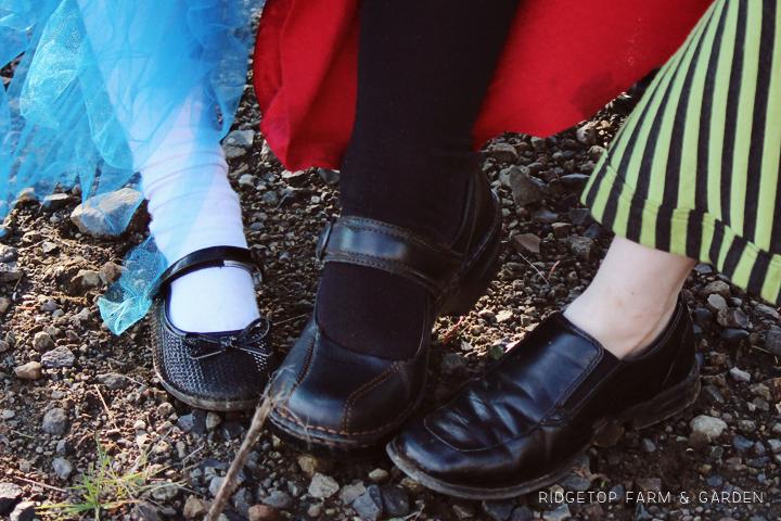 Alice in Wonderland costume 2