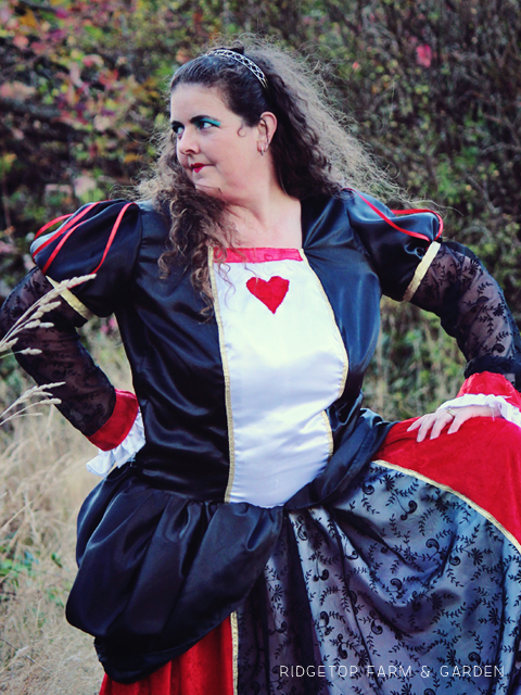 Alice in Wonderland costume red queen
