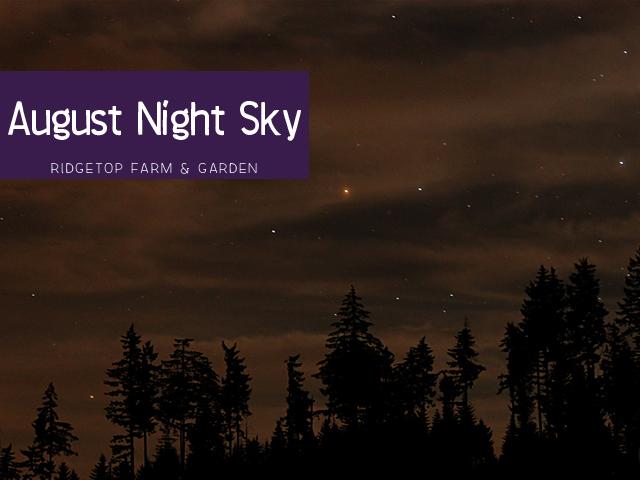 Ridgetop Farm & GArden | August Night Sky