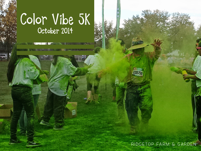Color Vibe Oct2014 title