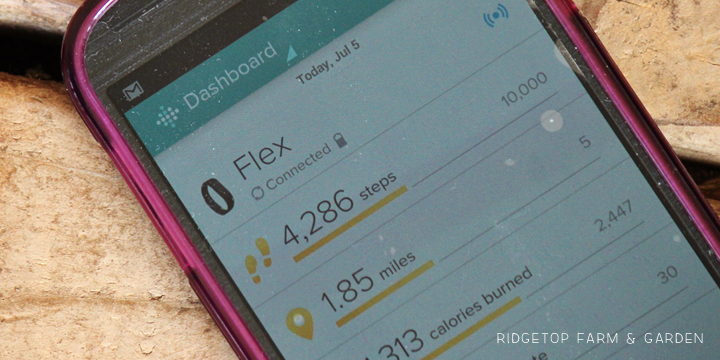 RIdgetop Farm & Garden | FitBit Flex Review