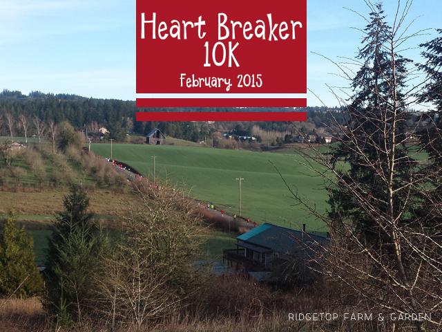 Heart Breaker 10K Feb 2015 Race Recap