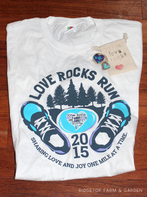 Love Rocks Run 3