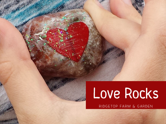 Love Rocks title