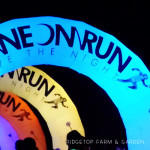 2013 Race Recap – Neon Run 5K
