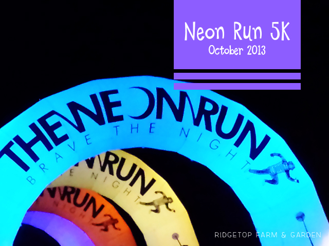 Neon Run Oct2013 title