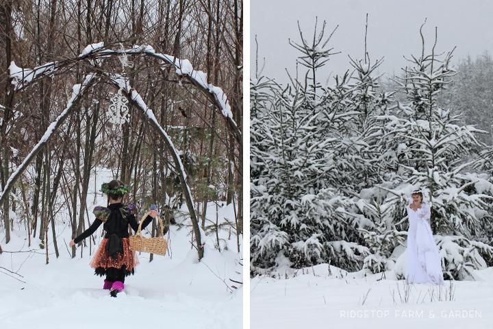 Snowpocalypse 4
