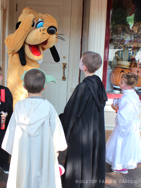 Star Wars costumes Pluto