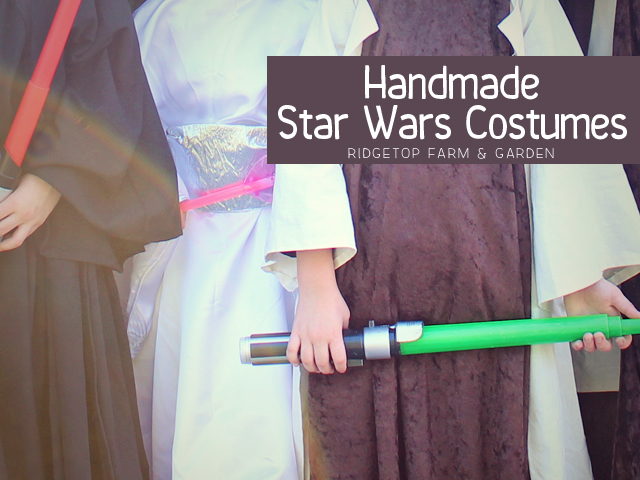 Star Wars costumes title