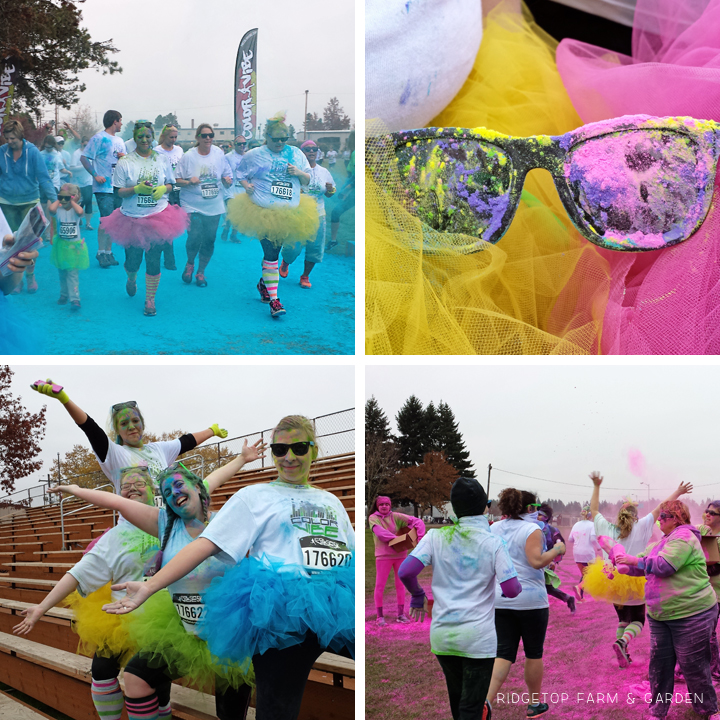 color vibe oct2013 3
