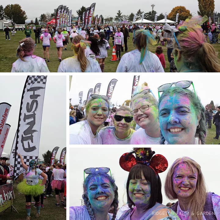 color vibe oct2013 finish