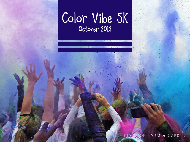 color vibe oct2013 title