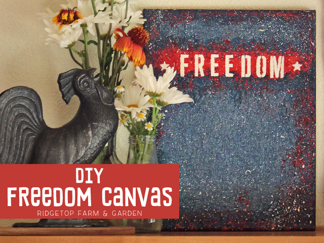 Freedom Canvas title