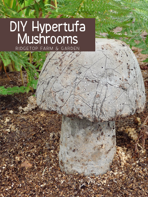 Ridgetop Farm & Garden | Hypertufa Mushrooms