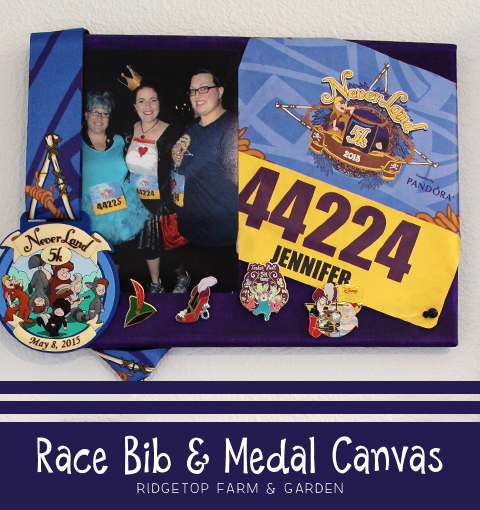 Ridgetop Farm and Garden |DIY | Bib and Medal Canvas