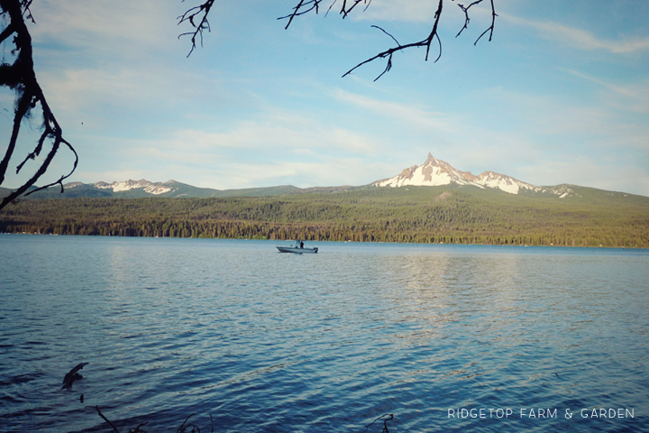 Ridgetop Farm and Garden   31 Days in Oregon   Crater Lake   Diamond Lake