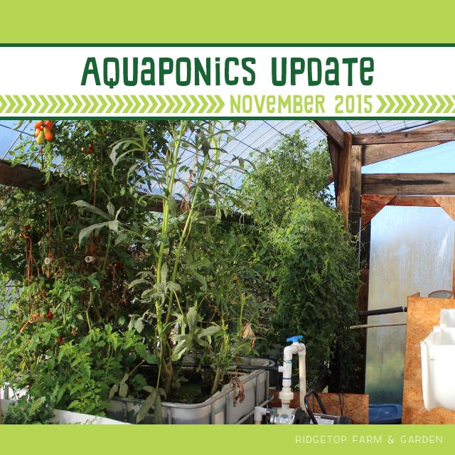 Nov2015Aquaponics - title