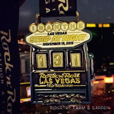 2015 Race Recap: Rock n Roll Las Vegas Half Marathon