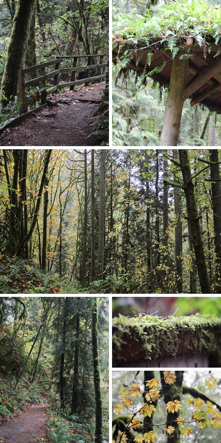 Ridgetop Farm and Garden | 31 Days in Oregon | Audubon Society | Portland