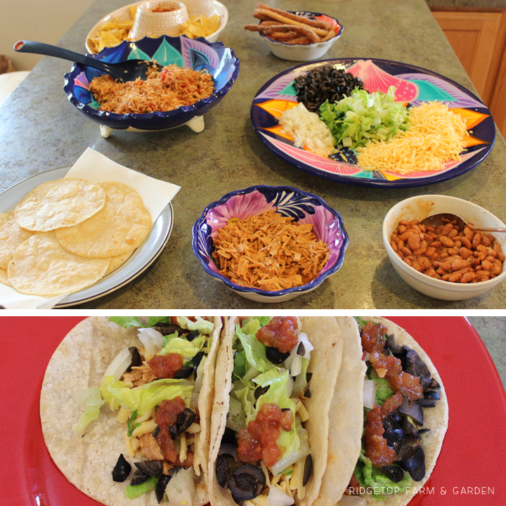 Ridgetop Farm and Garden | Home School | Mexico | Cinco de Mayo