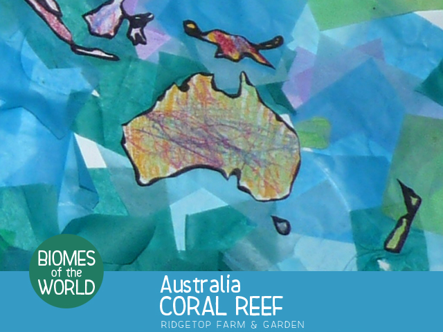 Ridgetop Farm and Garden | Biomes of the World | Australia | Coral Reef