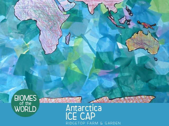 Ridgetop Farm and Garden | Biomes of the World | Antarctica | Ice Cap