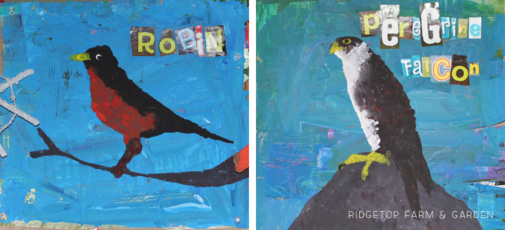 Ridgetop Farm and Garden | Mixed Media Bird Collage | Kid Art | How to