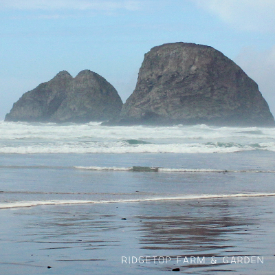 31 Days in Oregon: Netarts and Oceanside