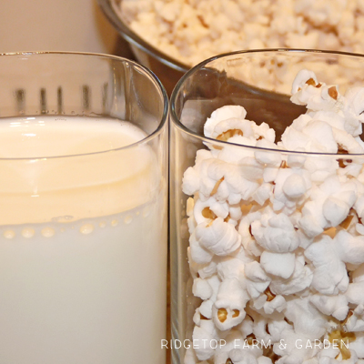 Popcorn in Milk Experiment