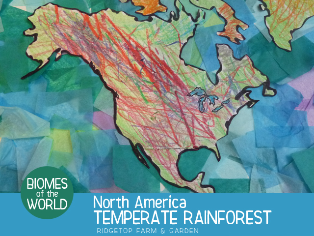 Temperate Rainforest World Map.Biomes Of The World Temperate Rainforest
