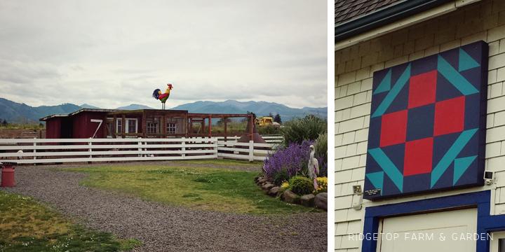 Ridgetop Farm and Garden | 31 Days in Oregon | Tillamook