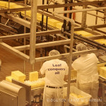 31 Days in Oregon: Tillamook Cheese Factory