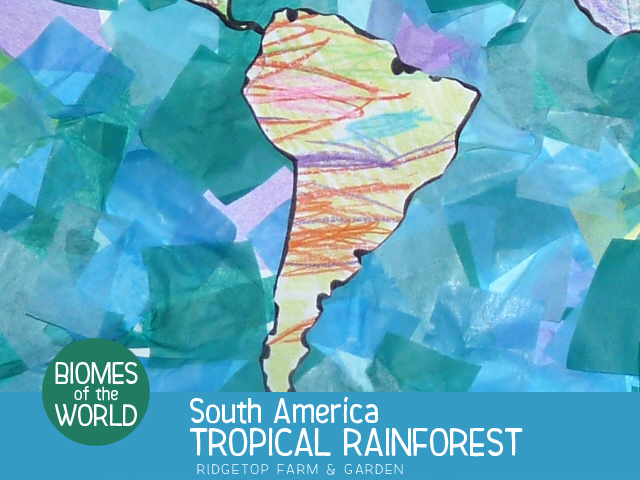 Ridgetop Farm and Garden | Biomes of the World |South America |Tropical Rainforest