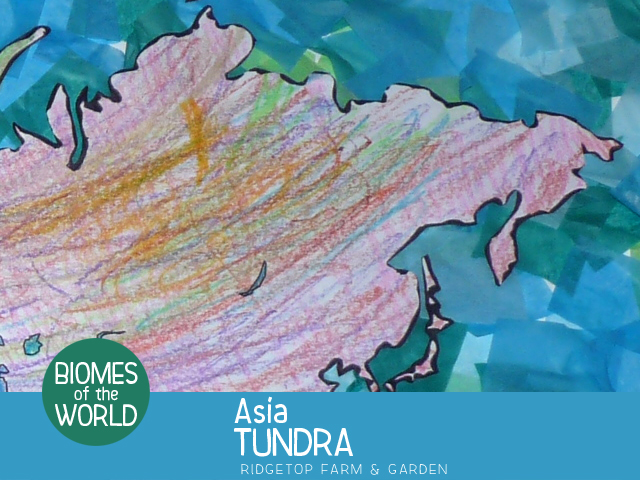 Ridgetop Farm and Garden | Biomes of the World | Asia | Tundra