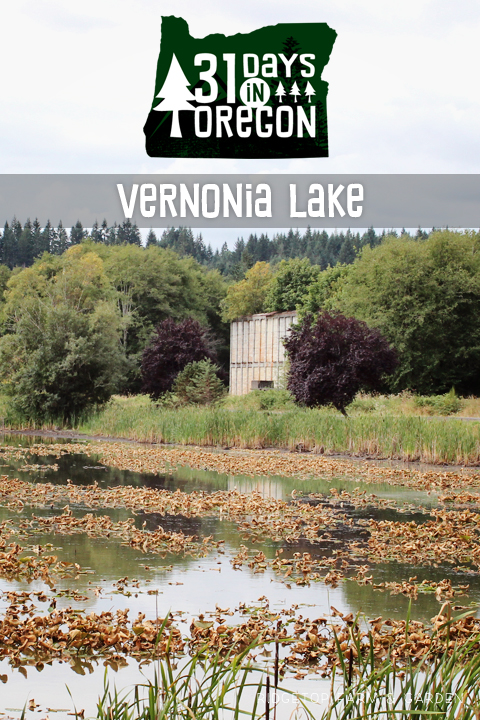 Ridgetop Farm and Garden | 31 Days in Oregon | Vernonia Lake