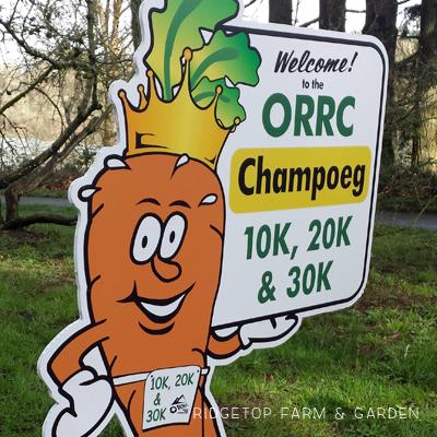 2016 Race Recap – Champoeg 10K