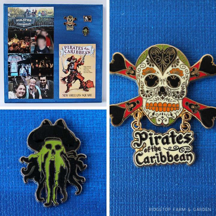 Ridgetop Farm and Garden | Disney | Pin and Photo Display Canvas | Pirates of the Caribbean