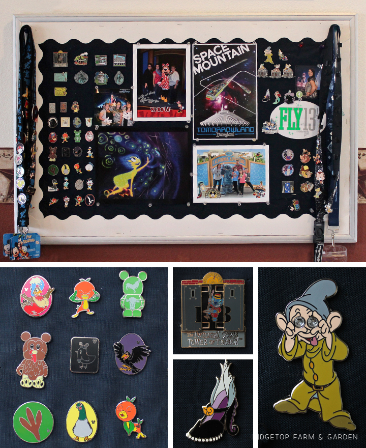Ridgetop Farm and Garden | Disney Gallery Wall | Pin and Photo Display