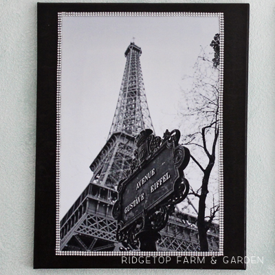Eiffel Tower Canvas Duo
