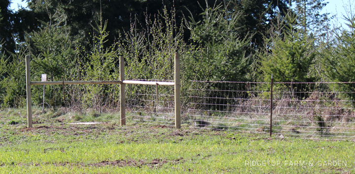 Ridgetop Farm and Garden | Instaling our Goat Fence